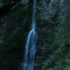 Marymere Falls, in Olympic National Park, Washington, is one of the pretties waterfalls I've seen in a long time.