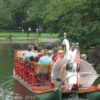 A swan boat in the Boston Public Garden, MA