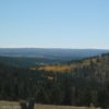 View from Cement Ridge in October, Black Hills National Forest, Wyoming
