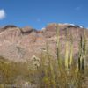 Along the Ajo Mountain Drive in Organ Pipe Cactus National Monument, Arizona