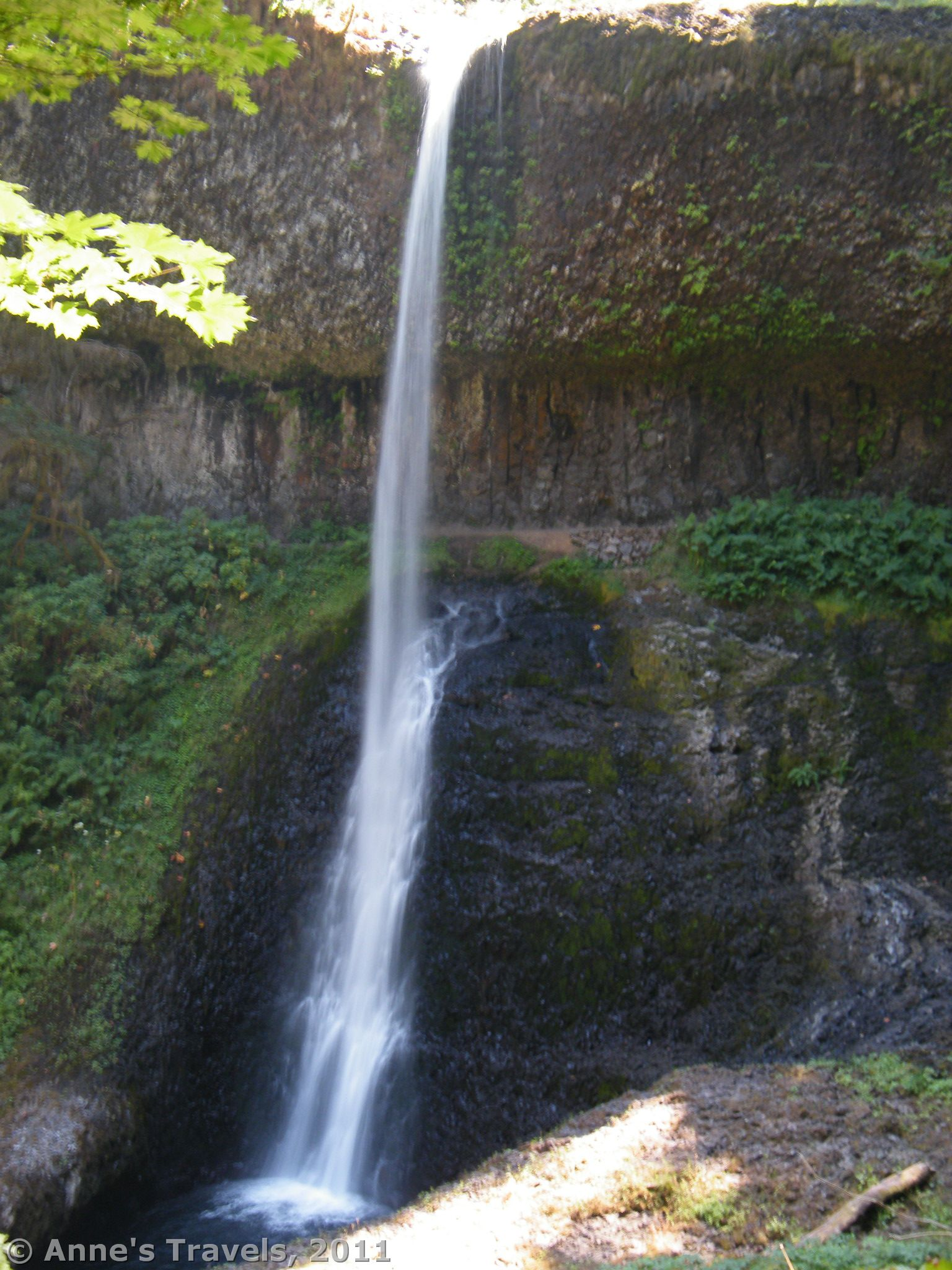 Waterfall Paradise In Silver Falls State Park Anne S Travels