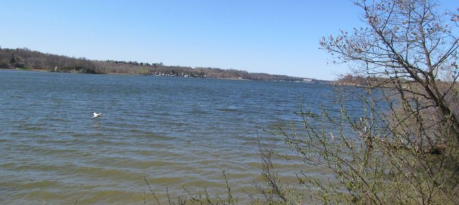 Great Local Park for Hiking – Abraham Lincoln Park