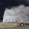 Old Faithful Geyser erupts with dark skies behind and a rainbow before, Upper Geyser Basin, Yellowstone National Park, Wyoming