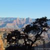 Along the Grandview Trail, Grand Canyon National Park, Arizona