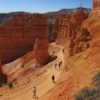 Hikers ascend the Navajo Trail out of Bryce Canyon, Bryce Canyon National Park, Utah