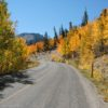 Autumn colors along the road in Great Basin National Park, Nevada