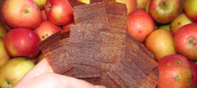 DIY Healthy Trail Snack – Dried Applesauce
