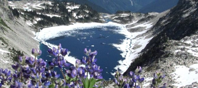 Announcing: A View Junkie's Guide to Dayhiking Washington