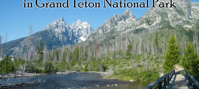 12 Best Day Hikes in Grand Teton National Park