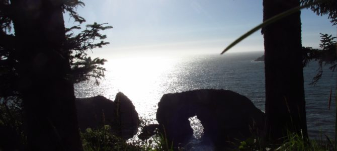 Arch Rock Picnic Area: Sea Stacks in Oregon