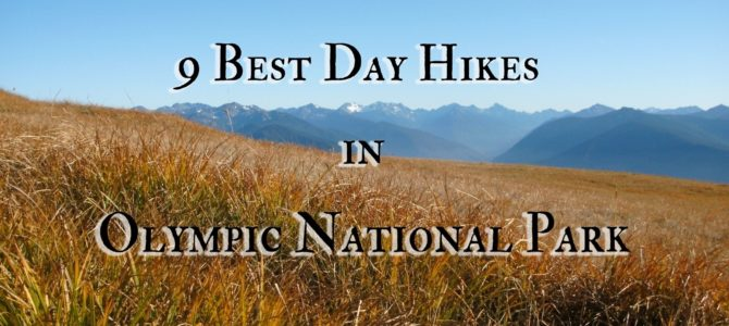 9 Best Day Hikes in Olympic National Park