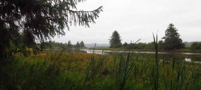 Misty Morning at Fort Clatsop