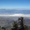 Bristle cone pines and views of Badwater Basin from the Telescope Peak Trail in Death Valley National Park, California