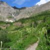 The Swiftcurrent Pass Trail just above Swiftcurrent Creek in the Swiftcurrent Amphitheater, Glacier National Park, Montana