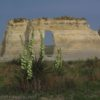 Small Soapweed Flowers in front of the Keyhole arch in Monument Rocks National Natural Landmark, Kansas