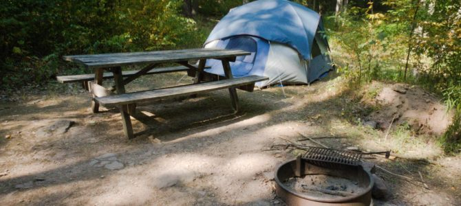 How to Camp (for free!) in Tiadaghton State Forest